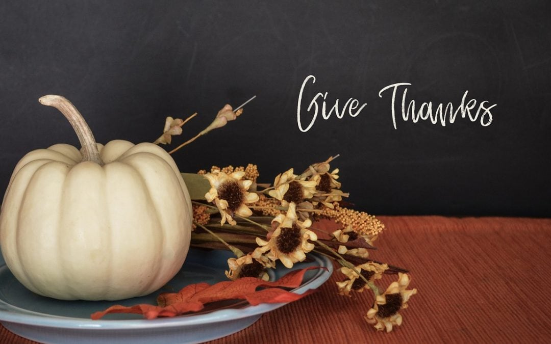 Happy Thanksgiving from The Tall Poppy Writers